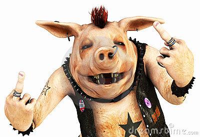 punk-pig-toon-17956264